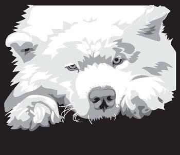 free vector Morda Dog 3