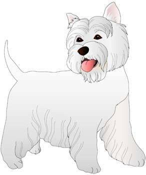free vector Terrier 18