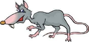 Mice 6