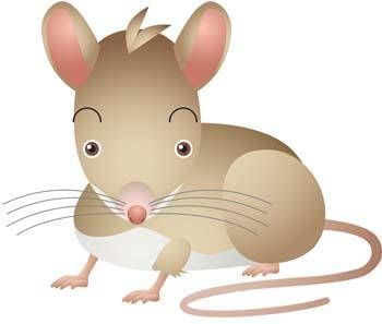 free vector Mouse Vector 24
