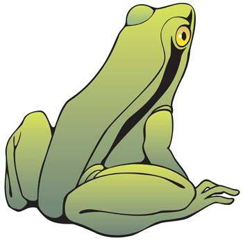 free vector Frog 14