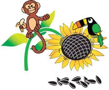 free vector Monkey 6