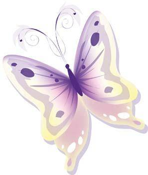Butterfly Vector 34