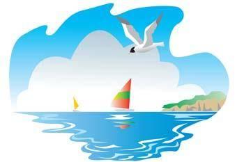 Seagull vector 7