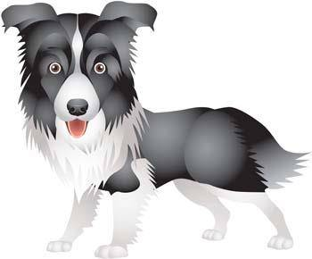 Dog vector collections 6