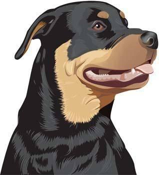 free vector Rottweiler 2