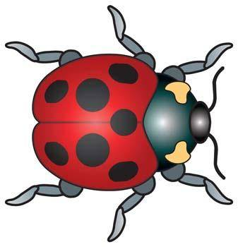 free vector Red Bugs 2
