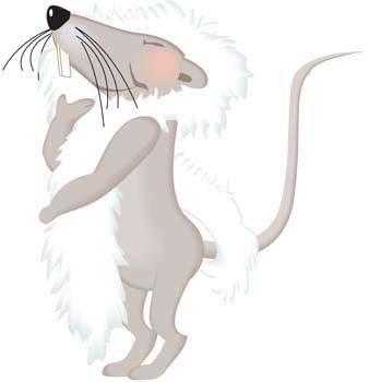 Mice 17