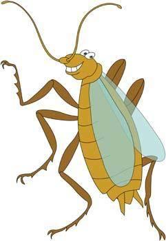 Bug Vector 3
