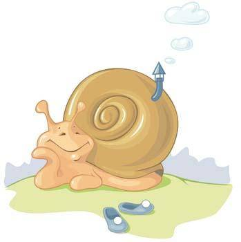 free vector Snail 2
