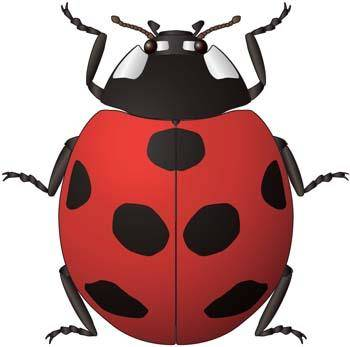 free vector Red Bugs 6