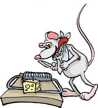 Mice 9