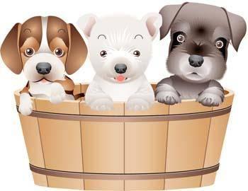 free vector Puppy vector 13