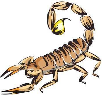 free vector Scorpion 1