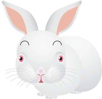 free vector Rabbit 12