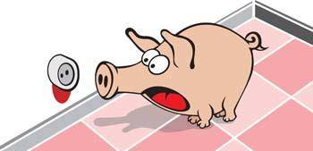 free vector Pig 47