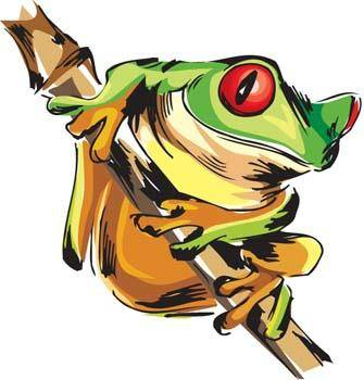 free vector Frog 2