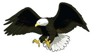 Eagle vector 11