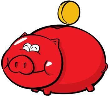 Pig 19