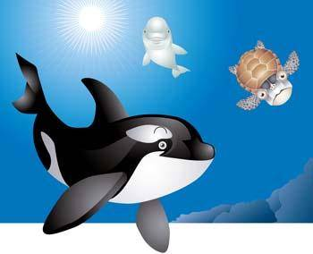free vector Killer whale 3
