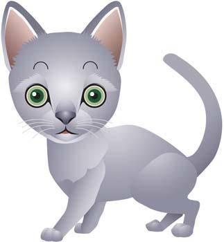 Cat vector 80