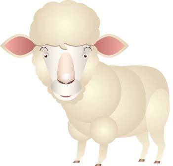 free vector Sheep vector 3