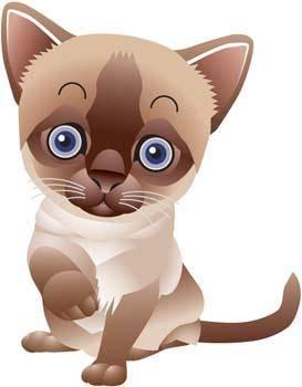 Cat vector 73