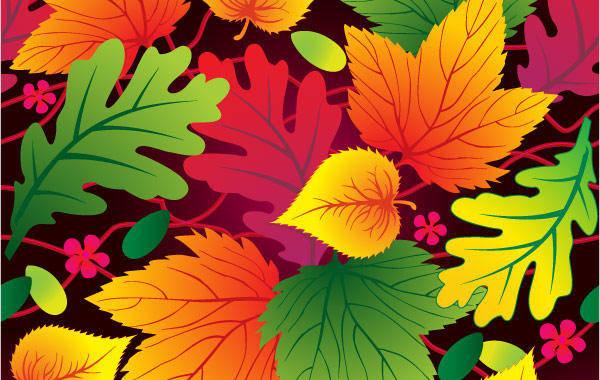 free vector Vector Leaf Background Leaf Leaves Pine
