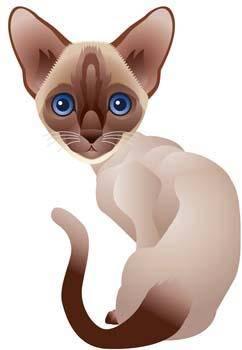 free vector Cat vector 68