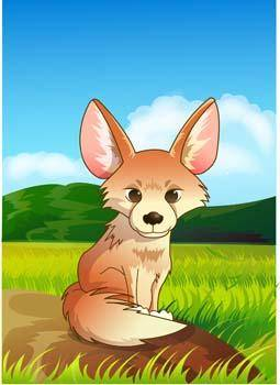 Fox Vector 17