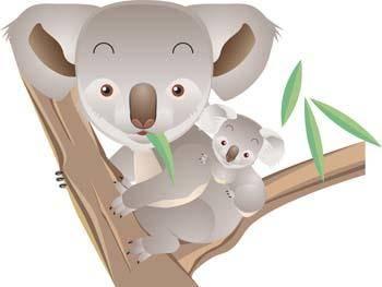 free vector Koala 1