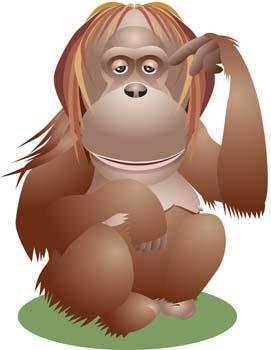 free vector Monkey 13
