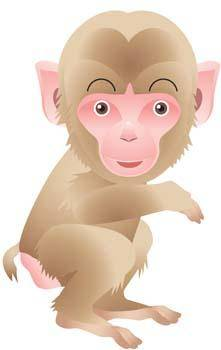 free vector Monkey 17