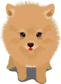 free vector Dog Like a Lion 1