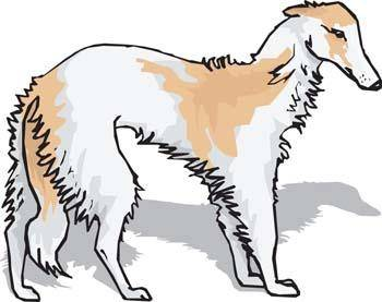 free vector Beautiful Dog Vector 2