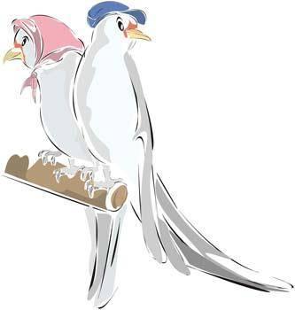 Pigeon vector 2