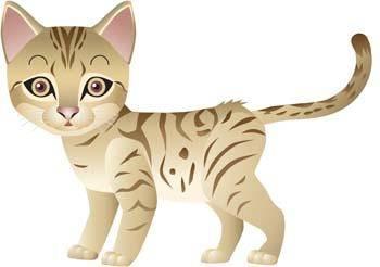 Cat vector 1