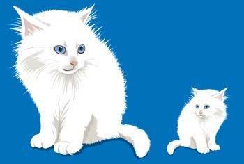 Cat vector 22