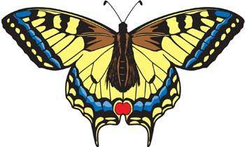 free vector Butterfly Vector 7