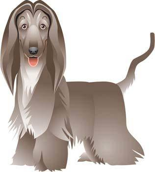 free vector Beautiful Dog Vector 3