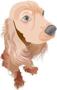 free vector Puppy 2