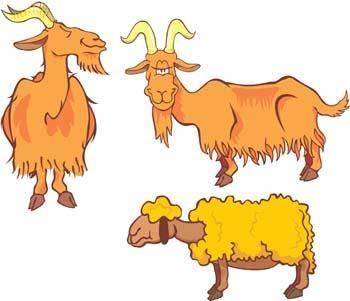 free vector Sheep 1