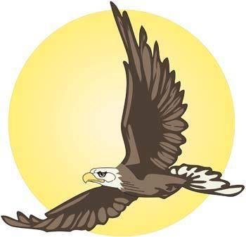 free vector Eagle vector 8