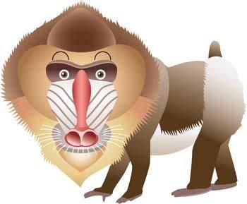 free vector Monkey 20