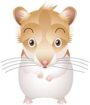 Mouse Vector 25