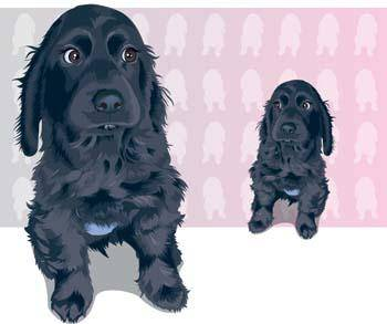 free vector Puppy 4
