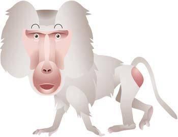 free vector Monkey 19