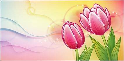 free vector Dreams tulip
