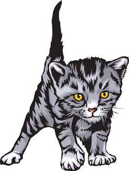 free vector Cat vector 2
