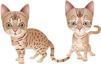 free vector Cat vector 59